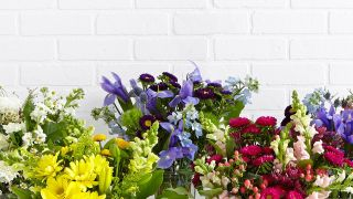 Flower care: top tips for making your Valentine's Day flowers last longer