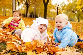 Babies in leaves