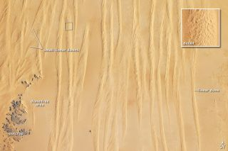 Linear sand dunes in the Great Sand Sea in Egypt as seen in a photo taken by astronauts aboard the International Space Station.
