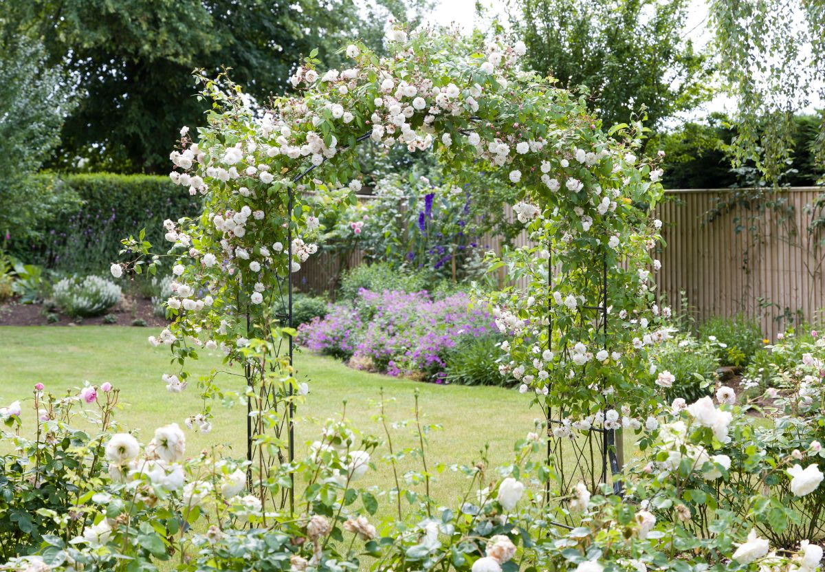Sensory gardens - what they are, how to make one, why you should