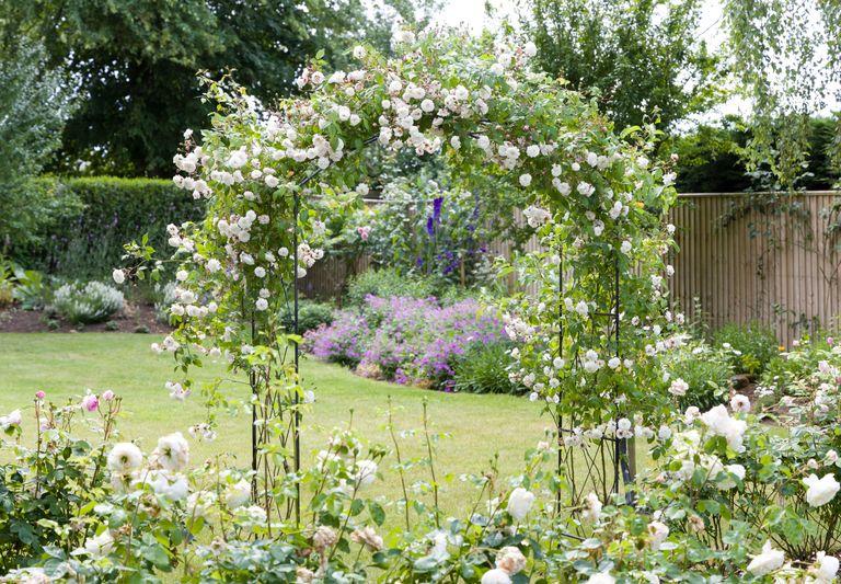 sensory gardens rose arbor
