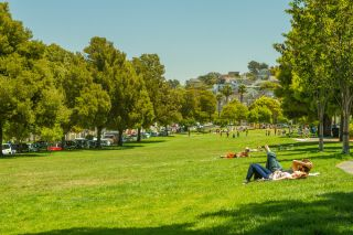 people in a park in San Francisco