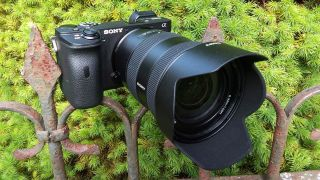 Sony Alpha a6600 review