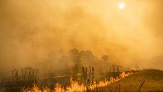wildfire safety: wildfire