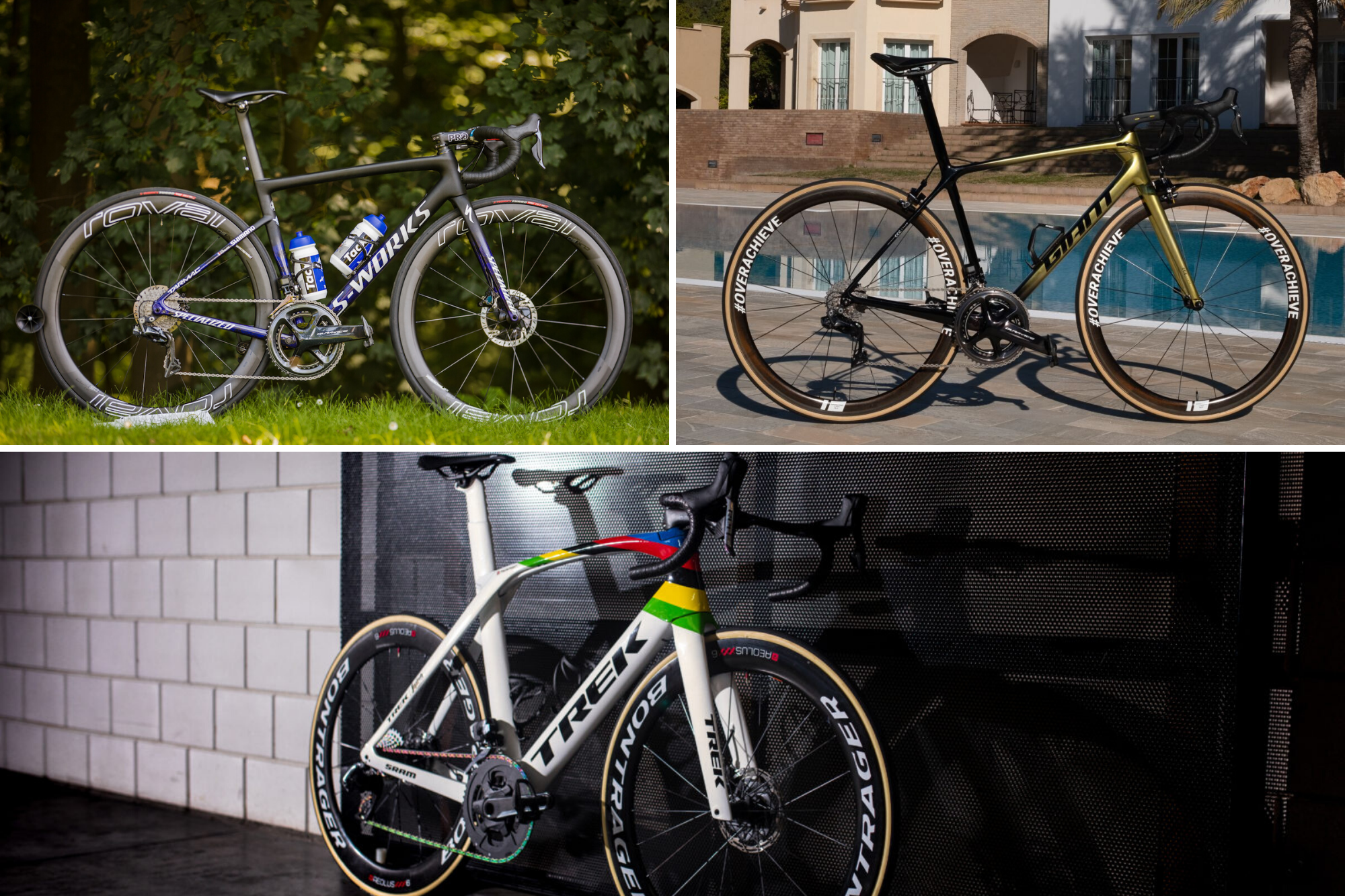 Five of the best pro custom bikes of 2019
