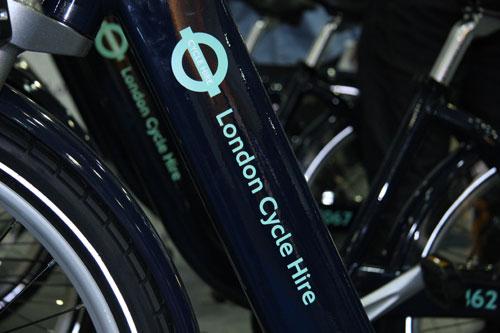 cycle09 IMG_1924.jpg