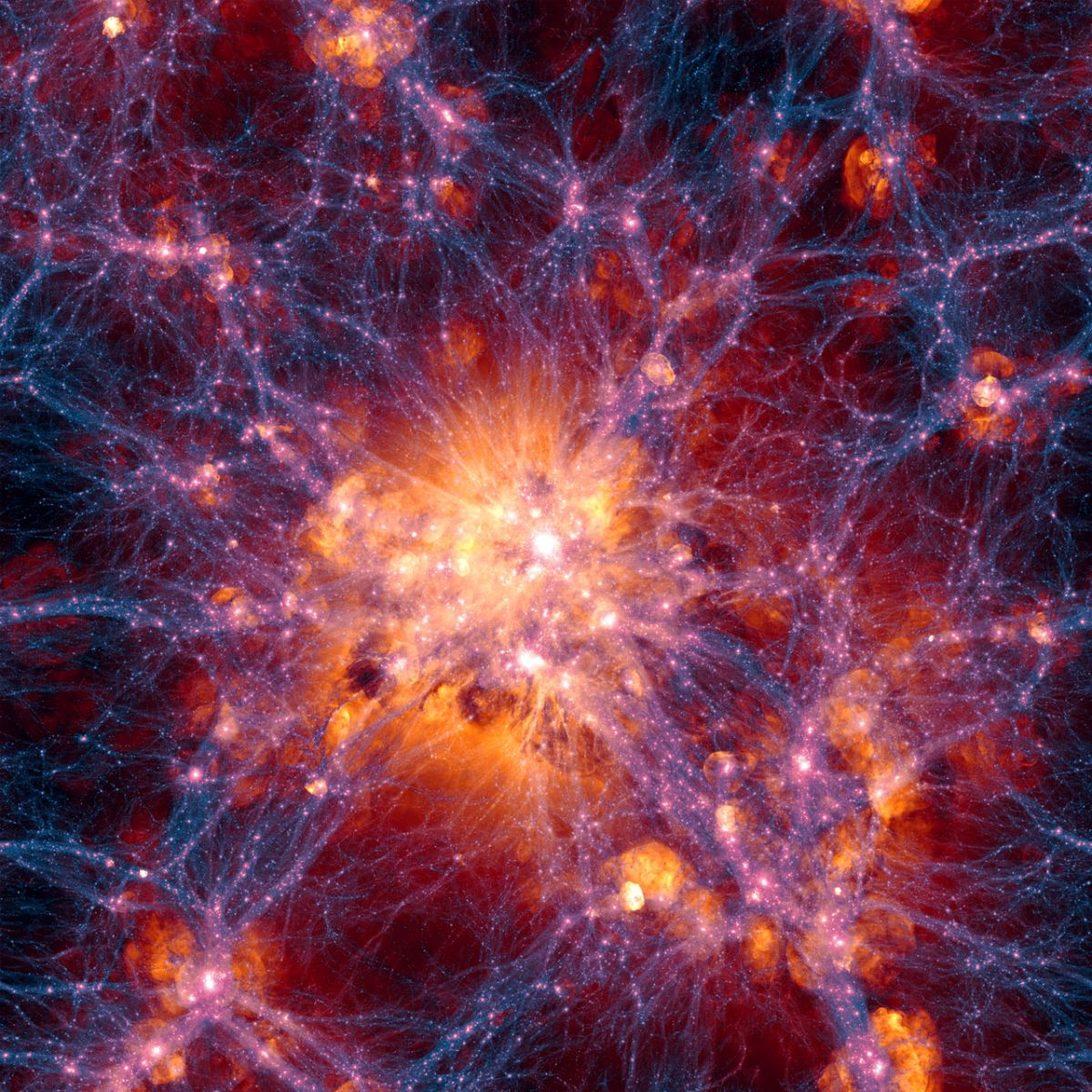 The Universe is Dying? Now What?