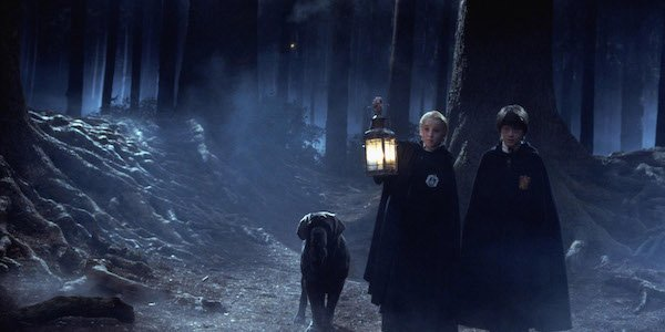 Forbidden Forest Harry Potter Draco Malfoy