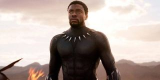 T'Challa stands triumphant in Black Panther (2018)