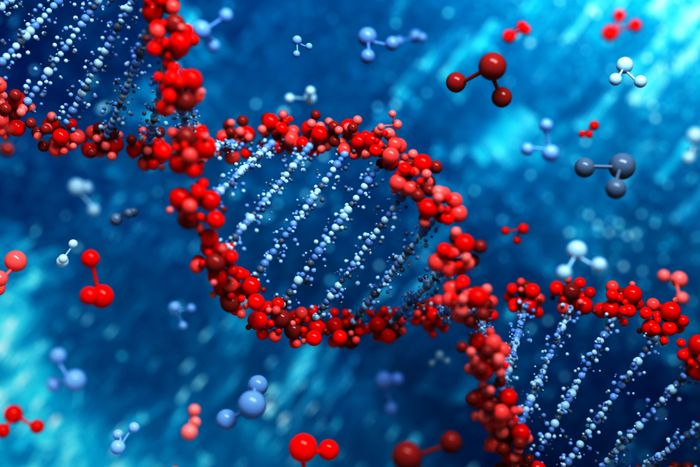 Genetically Modified Humans? How Genome Editing Works