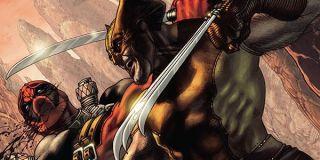Wolverine fighting Deadpool
