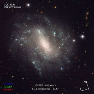 Hubble View of Galaxy UGC 9391