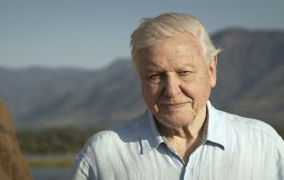 Dynasties - David Attenborough