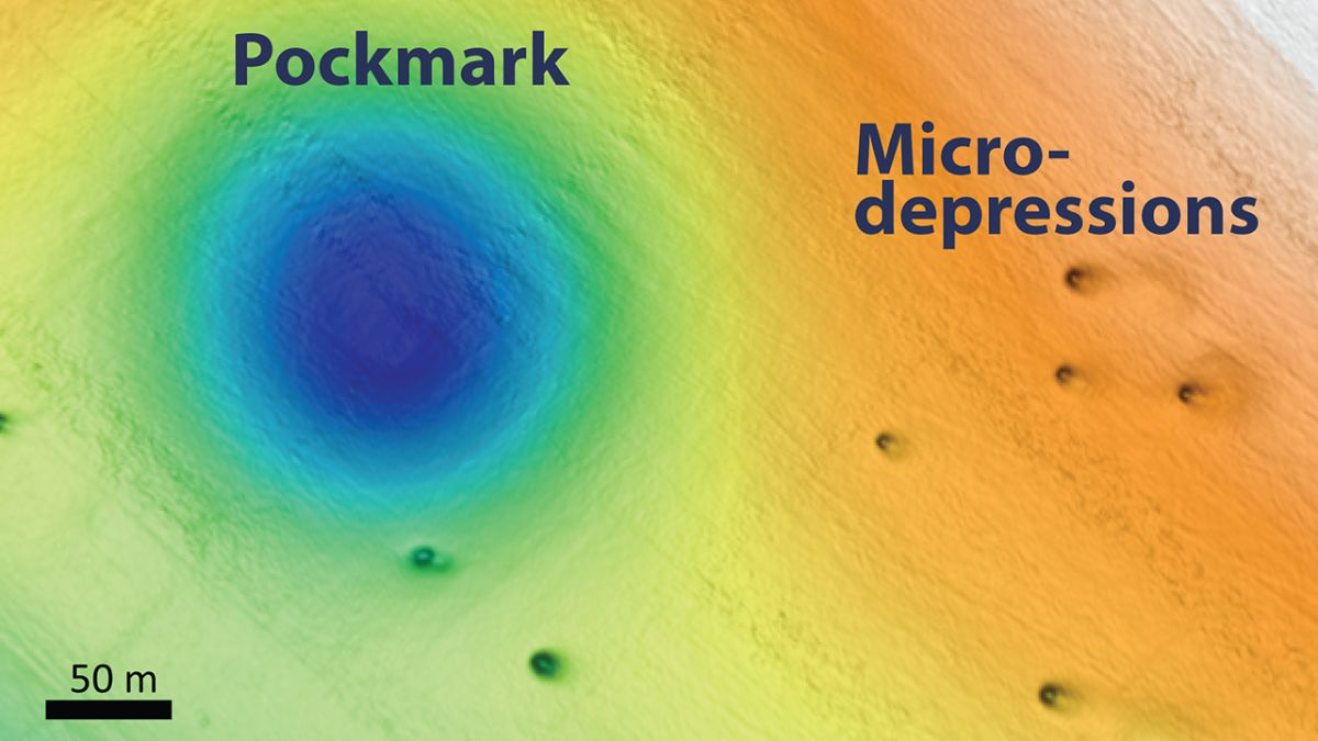 Vast Field of Mysterious, Perfectly Circular Holes Dot the
