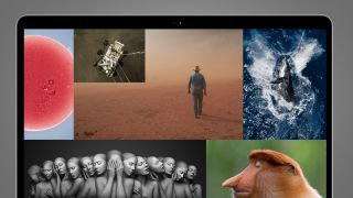 A laptop screen showing a collage of the best photos of the year