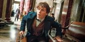 What Fantastic Beasts And Where To Find Them 2 WIll Be About