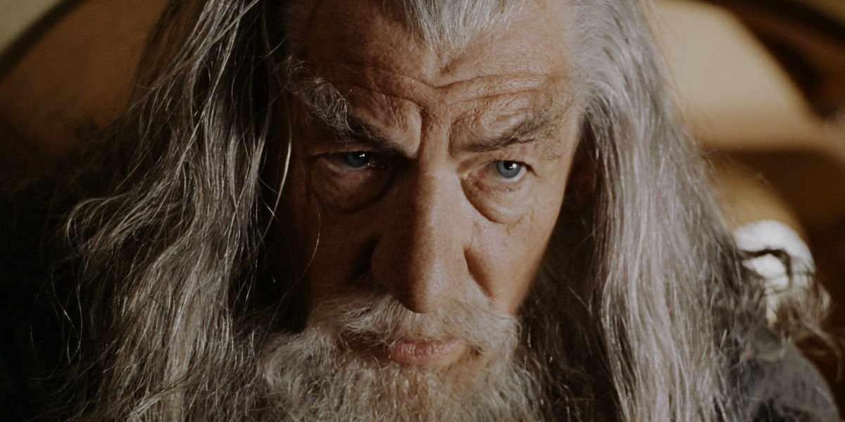 Ian McKellen in The Lord of the Rings: The Fellowship of the Ring
