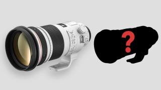 Canon launching pair of pro RF super-telephotos next year (with EOS R1)?