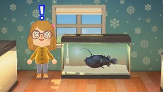 Animal Crossing: New Horizons football fish