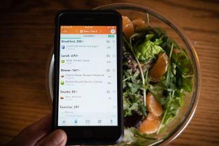 A diet-tracking app on a smartphone.