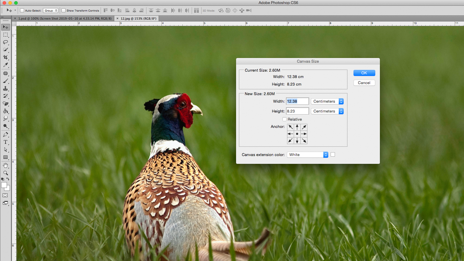 How to resize an image in Photoshop | Creative Bloq
