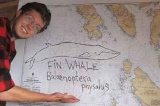 cetaceans, whales, marine biology, Eric Keen