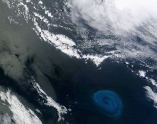 An instrument aboard NASA's Terra satellite captured this natural-color image of a deep-ocean eddy containing a phytoplankton bloom off the coast of South Africa. The enormous eddy, imaged on Dec. 26, 2011, likely peeled off from the Agulhas Current.
