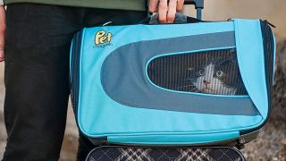 Pet Magasin Soft-Sided Pet Carrier