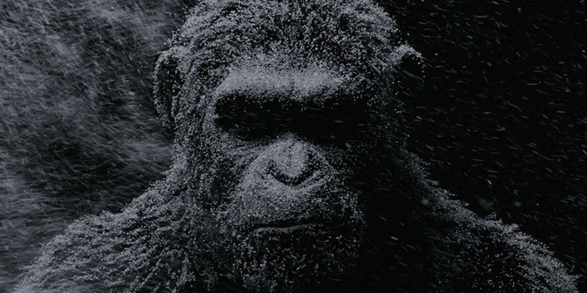 Sounds Like The Next Planet Of The Apes Movie Won't Be A Reboot After All