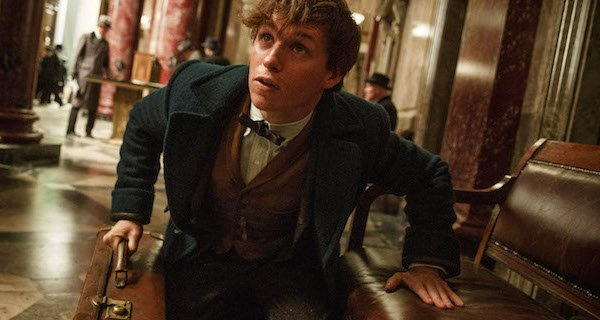 newt fantastic beasts and where to find them