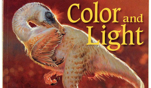 Illustrator books: Color and Light