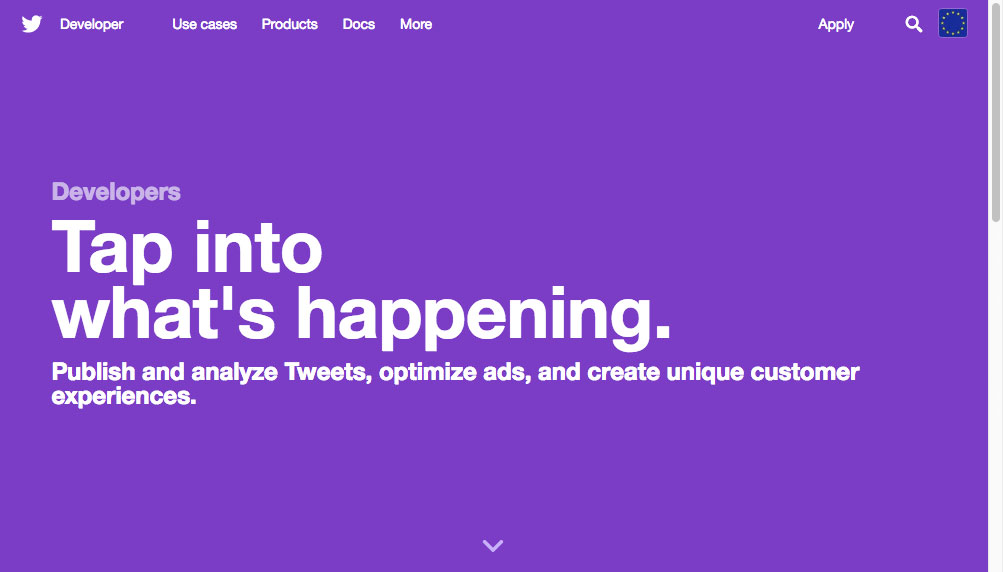 Twitter developer homepage