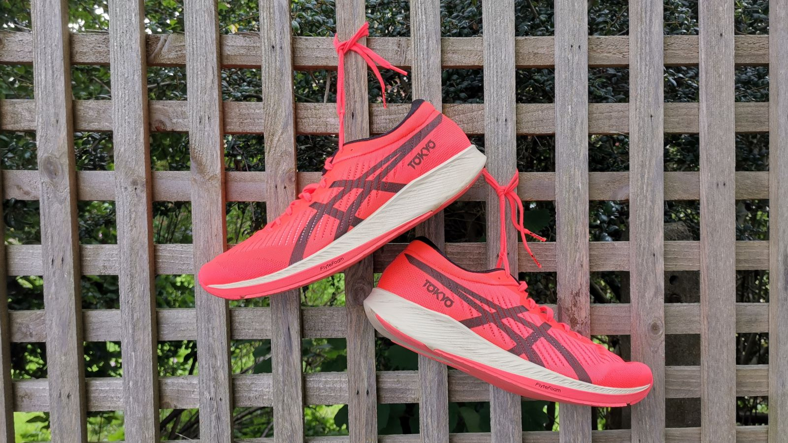 Asics Metaracer review: this is the