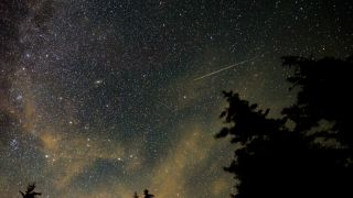 A Perseid meteor streaks across the night sky in this 30-second exposure captured from West Virginia, on Aug. 11, 2021.