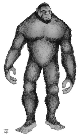 Artistic rendering of Bigfoot.