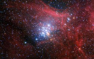 Star Cluster NGC 3293 1920