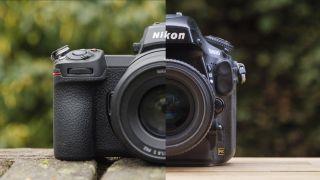 Nikon Z7 II / Nikon D800