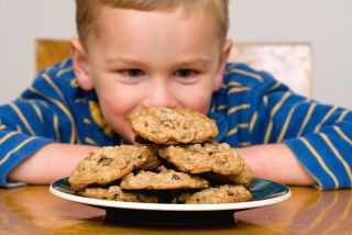 a boy stares at a plate full of chocolate chip cookies.
