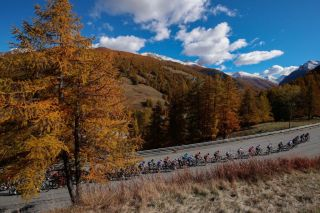 The pack climbs up the mountains with autumn coloured trees during the 20th stage of the Giro dItalia 2020 cycling race a 198kilometer route between Alba and Sestriere on October 24 2020 Photo by Luca Bettini AFP Photo by LUCA BETTINIAFP via Getty Images