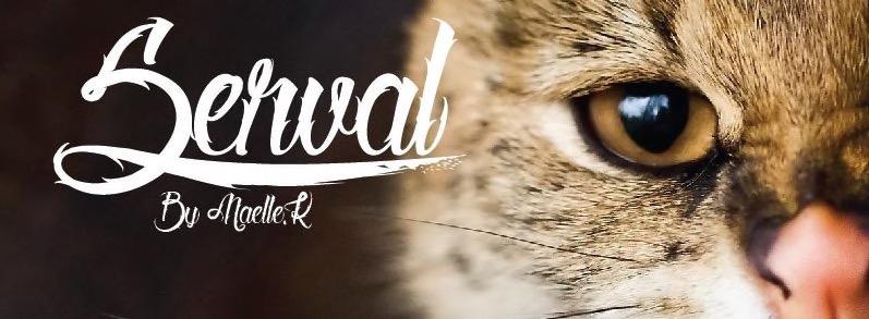 Best free fonts: Serval