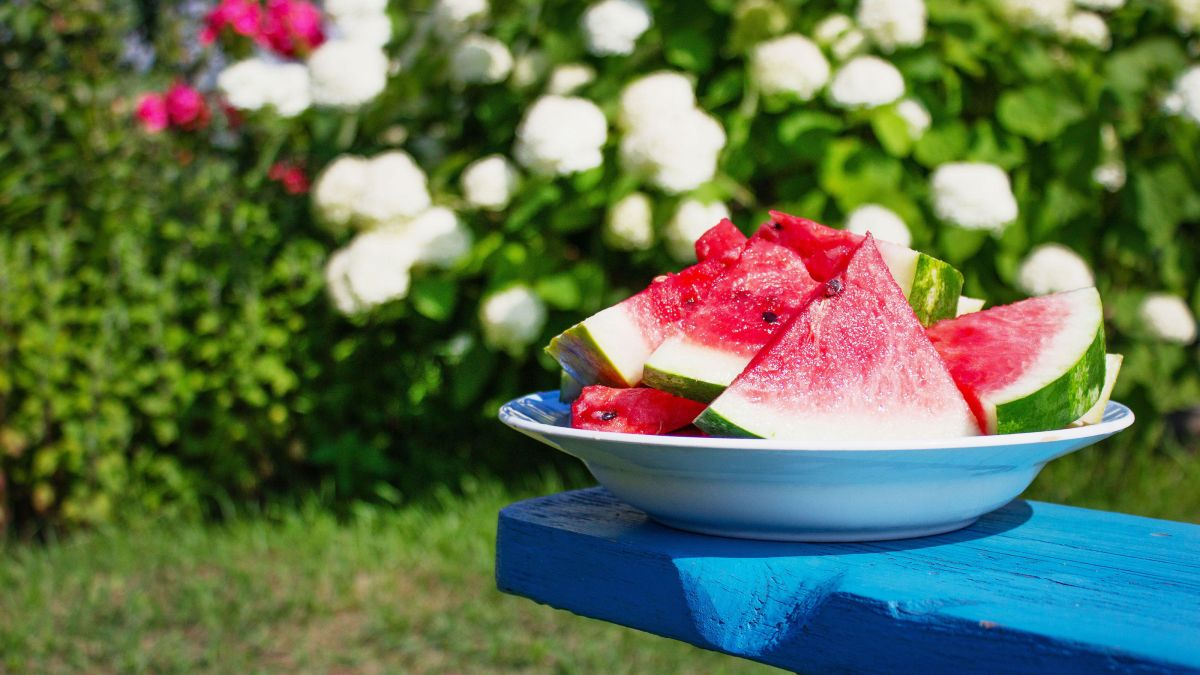 How to grow watermelon: expert tips on growing this refreshing fruit