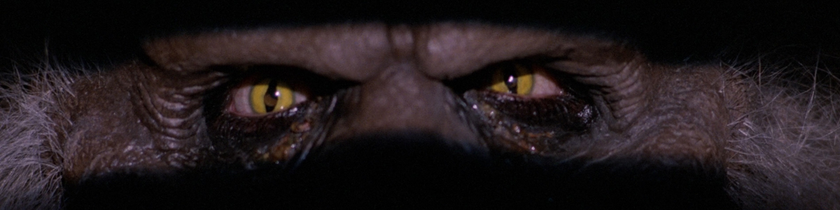 The Crate monster's eyes in Creepshow