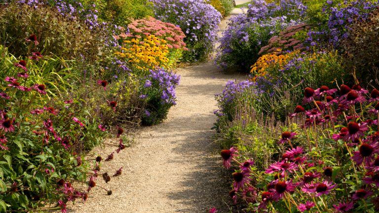 September gardening jobs - gravel path leading through garden borders in early autumn