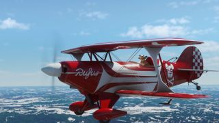Microsoft Flight Simulator piloted by a dog