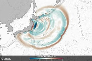 Still from an animation show how seafloor features influenced the March 11 japan tsunami.