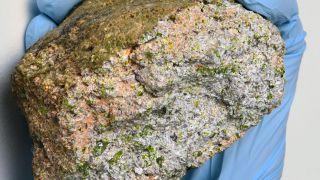 NWA 11119 meteorite