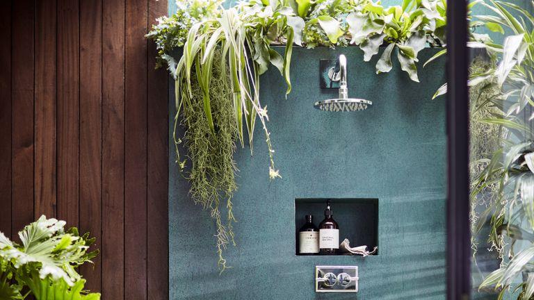 Best plants for bathrooms Botanical bathroom collection from Dobbies White tea vitamin E hand wash 500ml £15; Amber bath foam £12; Mandarin mint basil room spray £10; Philodendron Bipinnatifidum 'shangri-la' plant 27cm £69.99; Phelbodium Aureum blue star plant 12cm £6.99