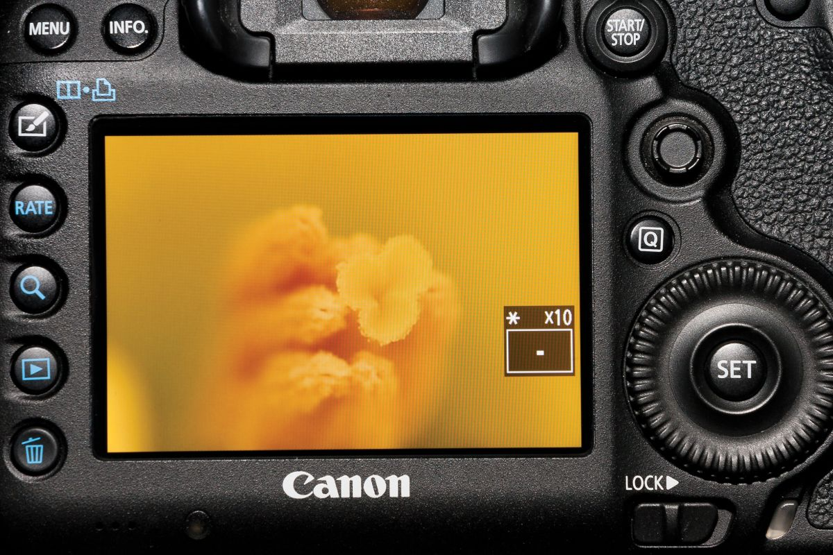 50 Canon camera tips: Everything you need to get the best