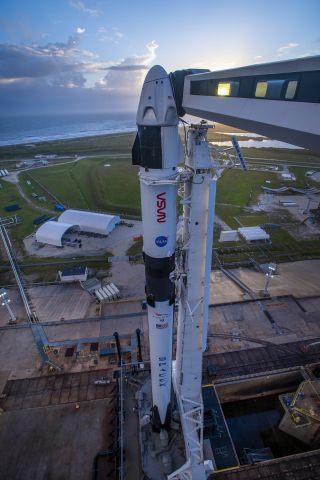 The Crew Dragon capsule that will deliver Crew-1 to the International Space Station sits on Pad 39A at NASA's Kennedy Space Center in Cape Canaveral, Florida in anticipation of the Nov. 14 launch.