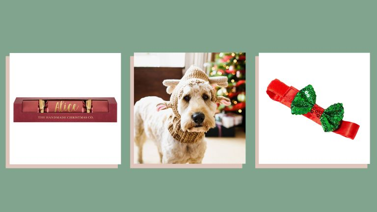 three of w&h's picks for Christmas gifts for dogs—a personalized cracker, reindeer ears on a dog and a festive bow collar—on a green background